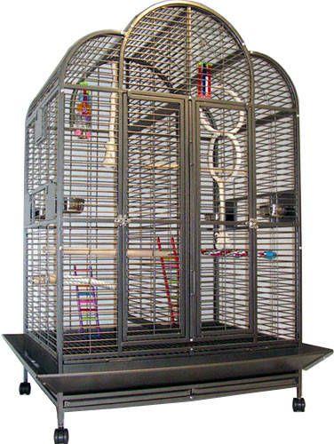 Strong Papegaaienkooi Jolanda grijs online kopen