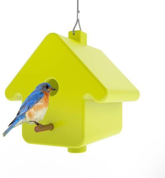 Qui est Paul vogelhuisje Picto online kopen