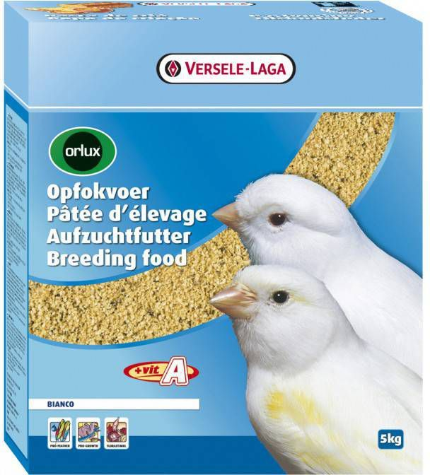 Versele-Laga Orlux Opfokvoeder Bianco Vogelvoer 5 kg online kopen